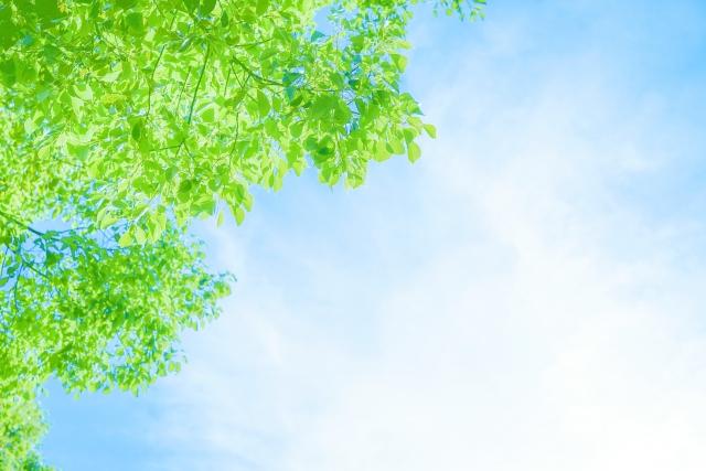 陰性 🤭高温期14日目 フライング フライング検査陰性でその後陽性になった人 女性の健康 「ジネコ」